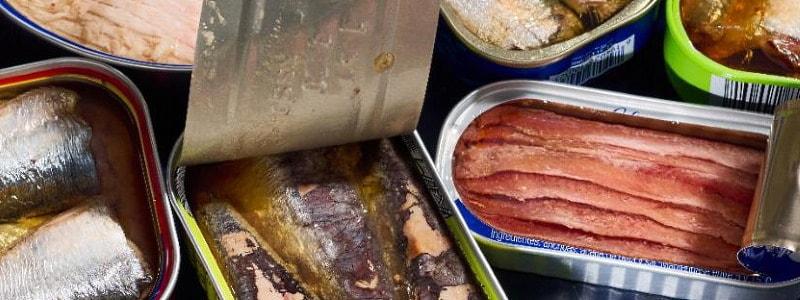 שימורי דגים אסף אביר מה הטעם נורית קריב דור קדמי מוסף כלכליסט